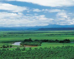 春の釧路湿原